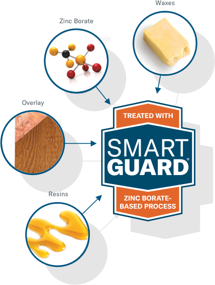 Infographic of SmartGaurd board
