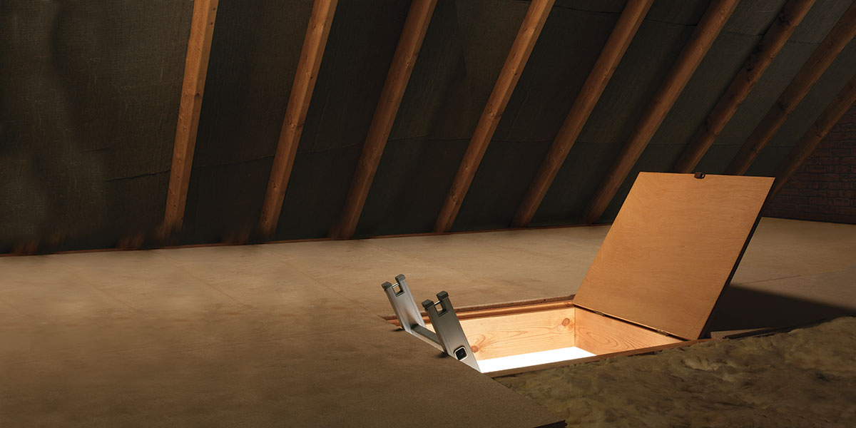 What's Up With Attics Today?