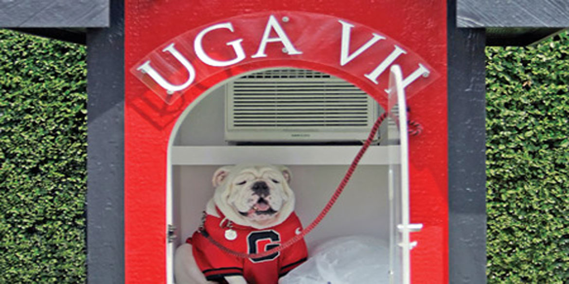 High-Tech Home Design Goes To The Dawgs