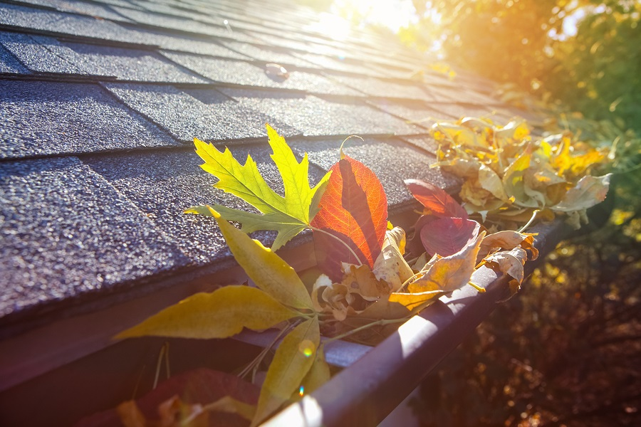 6 Fall Exterior Maintenance Essentials for Your Home