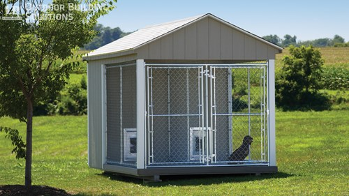 5 Tips to Create a Dog-Friendly Backyard | LP Shed