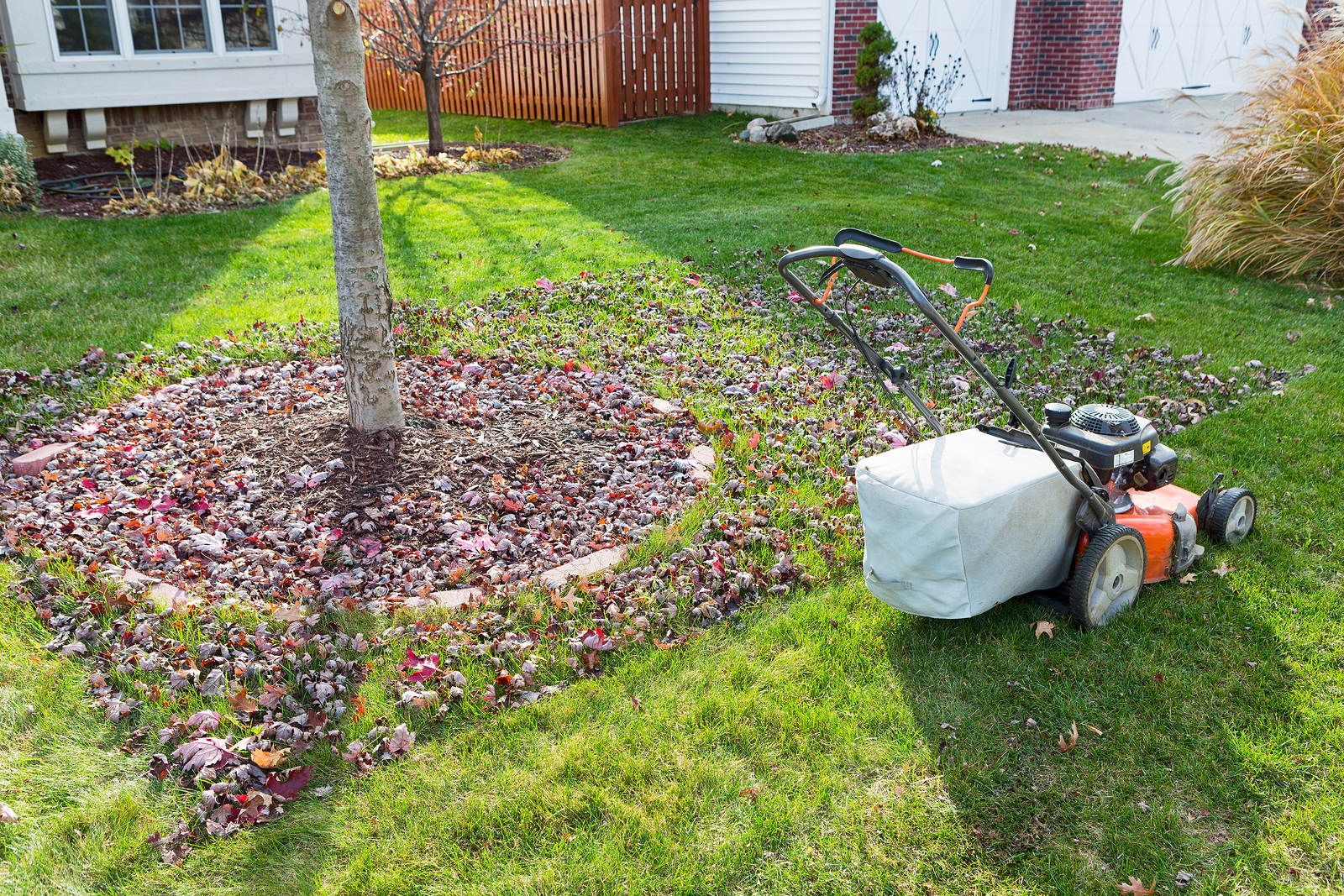 Fall Landscaping Tips & Tricks