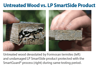 wood termite protection