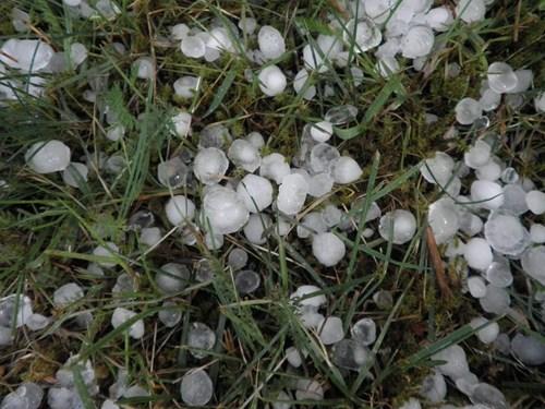 hail graphic