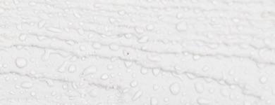 wet white wood